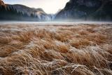 Sunrise over a Frosty Meadow in Yosemite National Park 写真プリント : Keith Ladzinski