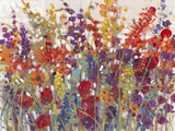 Variety of Flowers II Print by Tim O'toole