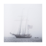 Through the Mist Prints by Laura Marshall