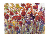 Variety of Flowers I Prints by Tim O'toole