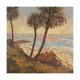 Palm Breeze I Prints by Graham Reynolds