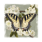 Butterfly Branch II Posters par Victoria Borges