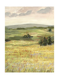Morning Meadow II Premium Giclee Print by Victoria Borges