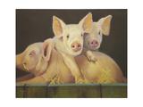 Life as a Pig III Print by Carolyne Hawley