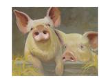 Life as a Pig II Prints by Carolyne Hawley
