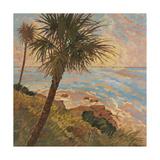 Palm Breeze II Print by Graham Reynolds