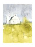 White Barn on Citron II Julisteet tekijänä Jennifer Goldberger