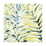 Sunlit Palms I Arte por Grace Popp