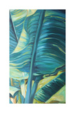 Green Banana Duo II Reproduction giclée Premium par Suzanne Wilkins
