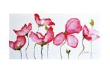 Horizontal Flores II Premium Giclee Print by Leticia Herrera