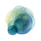 Evolving Planets IV Premium gicléedruk van Grace Popp