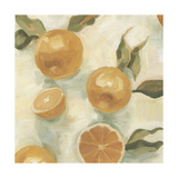 Citrus Study in Oil IV Premium Giclee Print by Emma Scarvey