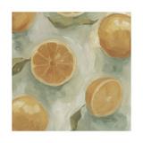 Citrus Study in Oil II Posters by Emma Scarvey