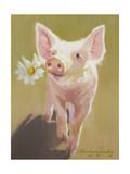 Life as a Pig IV Prints by Carolyne Hawley