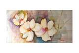 Horizontal Flores VII Premium Giclee Print by Leticia Herrera