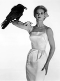 """Tippi Hedren. """"The Birds"""" [1963], Directed by Alfred Hitchcock. Stretched Canvas Print"""