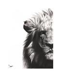 Lion II Reproduction giclée Premium par Eric Sweet