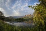 Royal Natal National Park with a view of the Amphitheatre. KwaZulu Natal. South Africa. Fotografisk tryk af Roger De La Harpe
