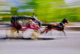 Horse and carriage drives in traffic down Central Park West in Manhattan, New York City, NY Impressão fotográfica