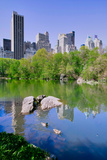 Lake and two ducks in Central Park in Spring with skyline in background, New York City, New York Impressão fotográfica