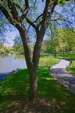 Lake in Central Park in the Spring, New York City, New York Impressão fotográfica