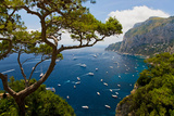 Elevated view of blue waters of the City of Capri, an Italian island off the Sorrentine Peninsul... Fotografie-Druck