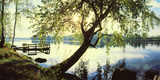 Trees and pier by the Vuoksi River, Imatra, Finland Photographic Print