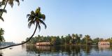 Kerala Backwaters near Alappuzha (Alleppey), Kerala, India Impressão fotográfica