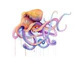 Octopus 2 Kunstdrucke von Sam Nagel