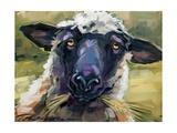 Bless Ewe Giclée-Premiumdruck von CR Townsend