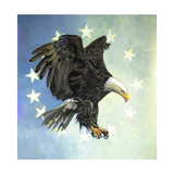 Great Bald Eagle Premium Giclee Print by Max Hayslette