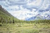 Banff II Photographic Print by Jenna Guthrie