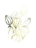 Seed Spectrum II Giclée-Premiumdruck von June Erica Vess
