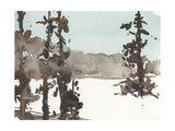 Woodland Sketch III Premium Giclee Print by Samuel Dixon