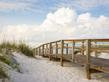 Inviting Boardwalk through the Sand Dunes on a Beautiful Beach in the Early Morning. Beautiful Puff Lámina fotográfica por  forestpath