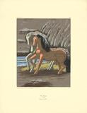 Two Horses Serigrafiprint (silkscreentryck) av Giorgio De Chirico