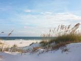 Sand Dunes and Ocean at Sunset, Pensacola, Florida. Fotografie-Druck von  forestpath