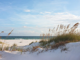 Sand Dunes and Ocean at Sunset, Pensacola, Florida. Photographic Print by  forestpath