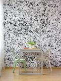 Sucuri White Mural de parede