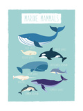 Marine Mammals Poster di  Kindred Sol Collective