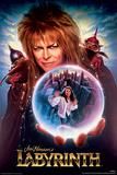 ラビリンス/魔王の迷宮(1986年) 高画質プリント