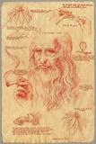 Leonardo Davinci - Pot Fotografia