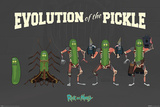 Rick and Morty - Evolution Of The Pickle Plakater