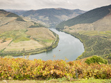 View over the River Duoro in autumn, Portugal, Europe Reproduction photographique par Jean Brooks