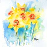 Yellow Narcissus Art by Rachel McNaughton