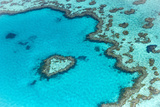 Heart reef in the Great Barrier Reef from above, Queensland, Australia. Fotografie-Druck von Francesco Riccardo Iacomino