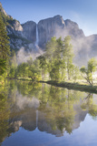 Yosemite Falls reflected in the Merced River at dawn, Yosemite National Park, California, USA. Spri Reproduction photographique par Adam Burton