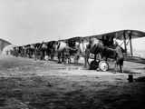 1918 Flight Line of American Expeditionary Force Pilots and Sopwith Camel WWI Biplanes Reproduction photographique