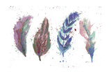 Natures Feathers Posters by Victoria Brown