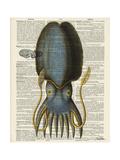 Squid 1 Giclée-Premiumdruck von Tina Carlson